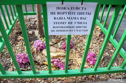 """Одесситы просят не красть цветы: """"ваша мама вас этому не учила"""" (ФОТО)"""