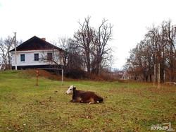 Уже через месяц откроется Одесская резиденция Святого Николая (ФОТО)