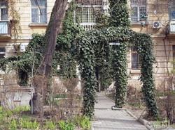 Прогулка по Французскому бульвару: как зеленый курорт превращается в каменные джунгли (ФОТО)