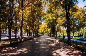 Умытая дождем солнечная осенняя Одесса (ФОТО)