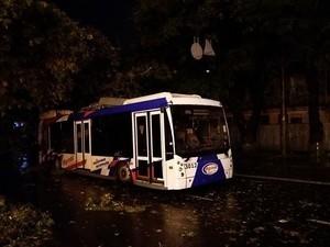 Ночью в Одессе на троллейбус упало дерево (ФОТО)