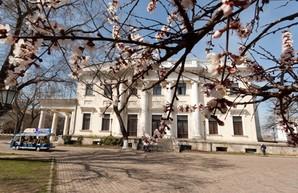 В одесской мэрии готовят реставрацию Воронцовского дворца
