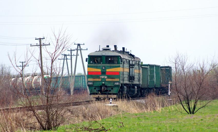 Грузовой поезд около Рени