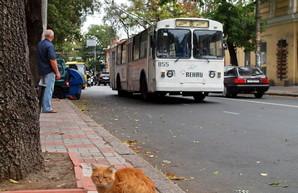 На Канатной проведут долгожданный ремонт тротуаров