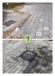 В Одессе идет реконструкция центральной аллеи Ботанического Сада (ФОТО)
