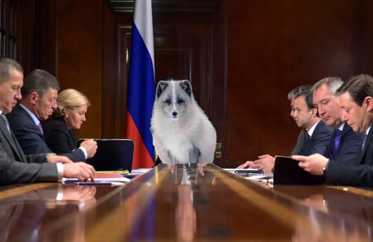 В правительстве РФ смотрят в будущее без оптимизма