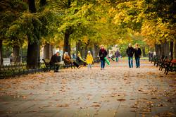 В Одессе закончилась золотая осень (ФОТО)