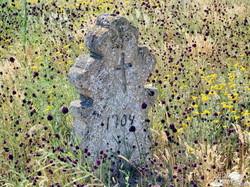 Старинное кладбище в Одесской области рушится: из земли торчат гробы и кости (ФОТО)