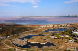 Куяльницкий лиман стал розовым, а на берегах появилась соленая пена (ФОТО)