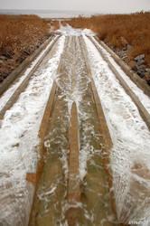 Куяльник снова наполняют морской водой: мнения одесских ученых разделились (ФОТО)