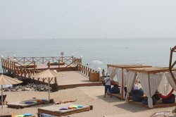 Прогулка возле Черного моря: Дельфин - Ланжерон (ФОТО)