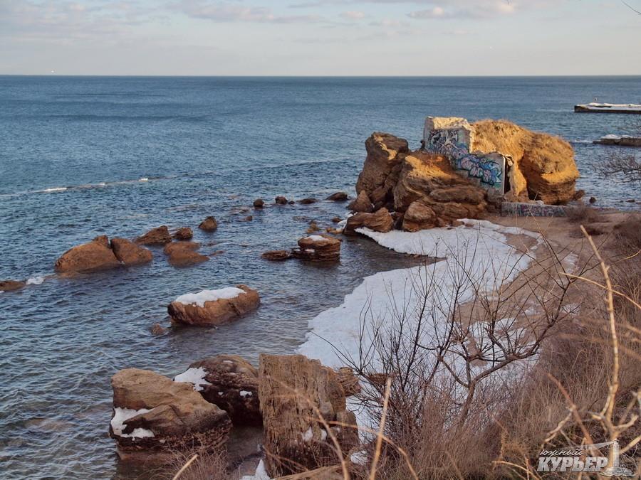 одесса, море, весна, пляж, кот, чайки