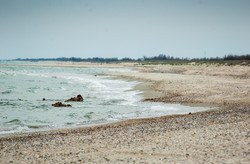 Морской курорт на юге Одесской области страдает от отсутствия воды, бездорожья и нашествия шакалов
