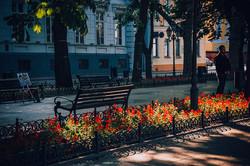Весенняя Одесса вскоре после дождя (ФОТО)