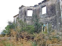 Спасите умирающие памятники Одесской области: имение Марини в Мологе (ФОТО)
