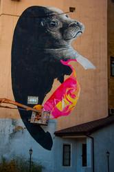 Спешите видеть: на Французском бульваре рисуют тюленя (ФОТО)