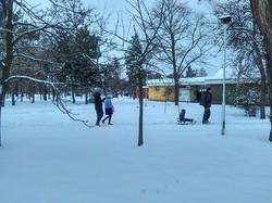 Весь юг Одесской области засыпало снегом (ФОТО)