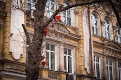 Как ко дню Влюблённых украсили витрины (ФОТО)