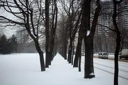 Одесса и область готовятся к новому удару зимней стихии (ФОТО)