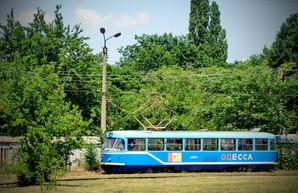Фото дня: одесские трамваи в буйстве летней зелени