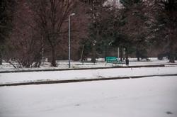До Одессы дошел снегопад с африканским песком (ФОТО)