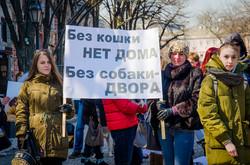 В Одессе впервые состоялся Марш спасённых собак (ФОТО)