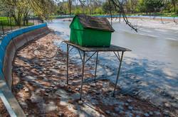 Как чистят пруды в Одесском парке Победы (ФОТО)