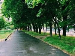 Одесса после майского дождя (ФОТО)