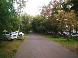 Автохамы превратили главный парк Одессы в парковку (ФОТО)