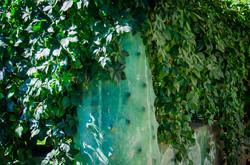 В Одессе установлен самый необычный памятник огурцу (ФОТО)