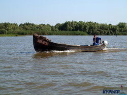 Европа собралась восстанавливать дельту Дуная (ФОТО)