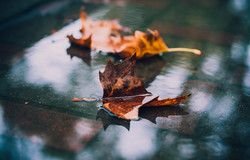 50 оттенков одесского неба осенью (ФОТО)