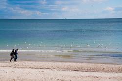 В Одессе редкое природное явление: море отходит от берега (ФОТО)