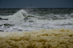 Осенний шторм в Одессе: пляжи покрыты слоем пены (ФОТО)