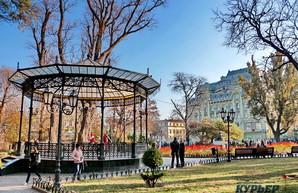 Последний день золотой осени в Одессе (ФОТО)