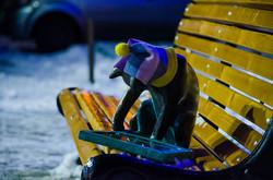 Самые знаменитые коты Одессы оделись в теплые шарфы и шапки (ФОТО)