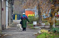 Одесские Ближние Мельницы в зимний период (ФОТО)