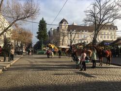 В Одессе устанавливают новогоднюю ёлку (ФОТО)