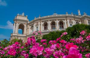 2018 год в Одессе в фотографиях: июнь