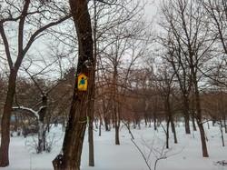 Зимняя Одесса в парке Шевченко (ФОТО)