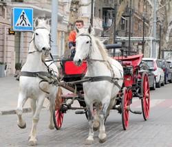 Красота и гордость в Одессе (ФОТО)