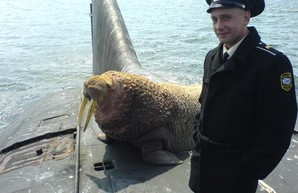 Северный флот ВМФ РФ по-прежнему беззащитен перед иностранными субмаринами