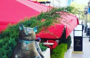В Одессе установили скульптуру кошки Софы (ФОТО)