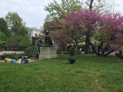 В Одесском Городском саду приводят в порядок скульптуры львов