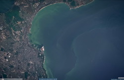 Цветущее Черное море у берегов Одессы показали из космоса (ФОТО)