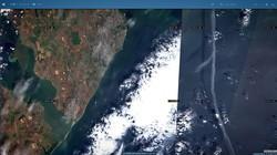 """У побережья Одессы море """"цветет"""" сильнее всего в порту (ФОТО)"""