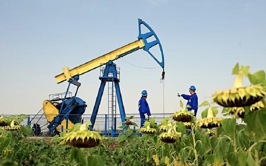 Добыча газа в Украине за полгода выросла на 289 млн м³