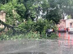 В Одессе восстанавливают повреждения от вчерашнего урагана (ФОТО)