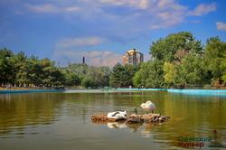 Парк Победы в Одессе и его обитатели (ФОТО)