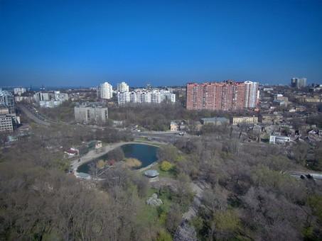 В Одессе озаботились неудовлетворительным состоянием Дюковского парка